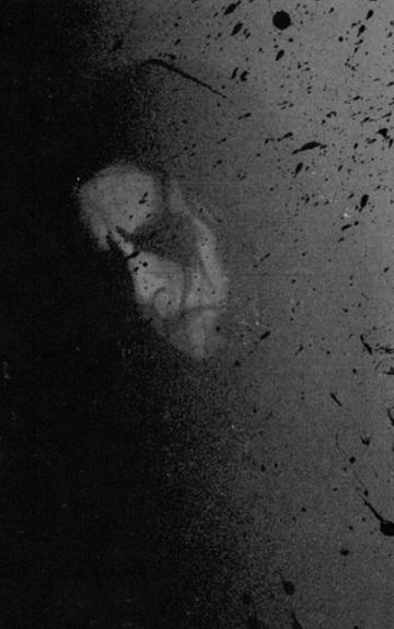 عکس سیا سفید زاستور